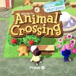 Animal Crossing Lesson